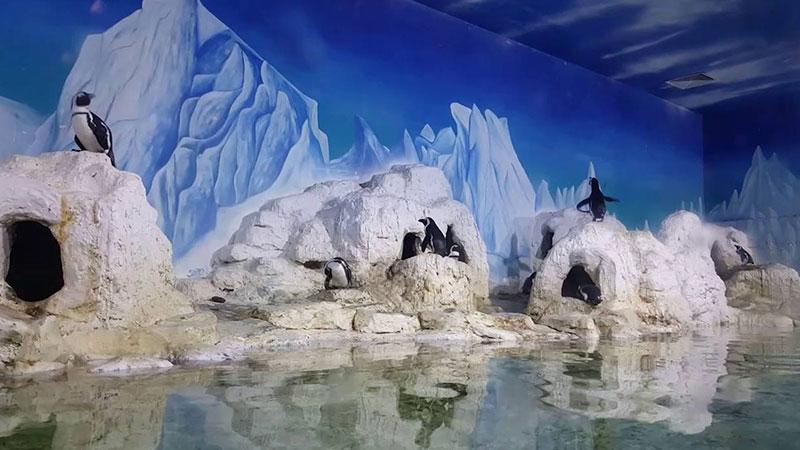 chim-canh-cut-vinpearl-aquarium-times-city